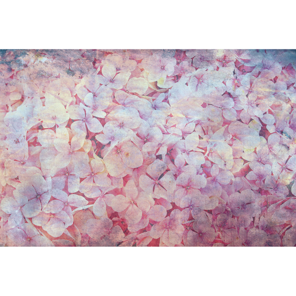 Picture of Abstract Blooms Wall Mural